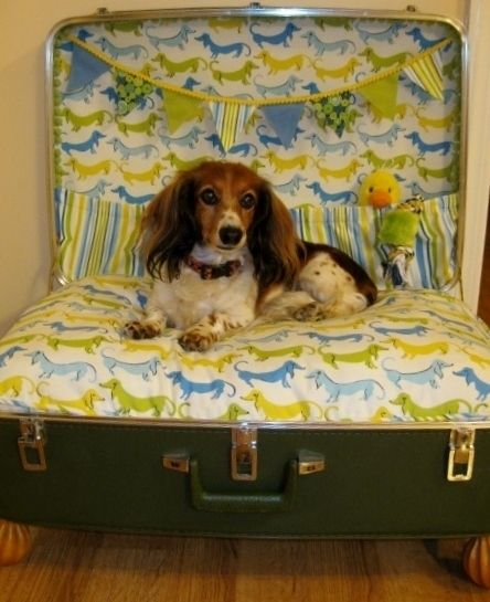 Please vote for my suitcase doxie bed once a day till September 30, 2013.  Thanks!