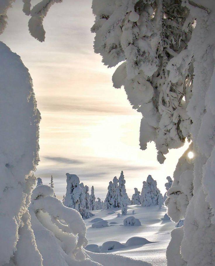 Winter dreams in Ylläs, Lapland, Finland