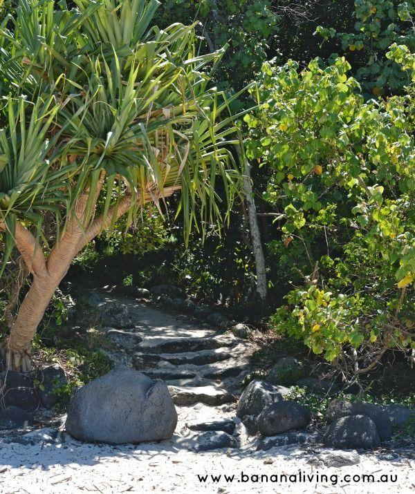 www.bananaliving.com.au Gold Coast City Guide