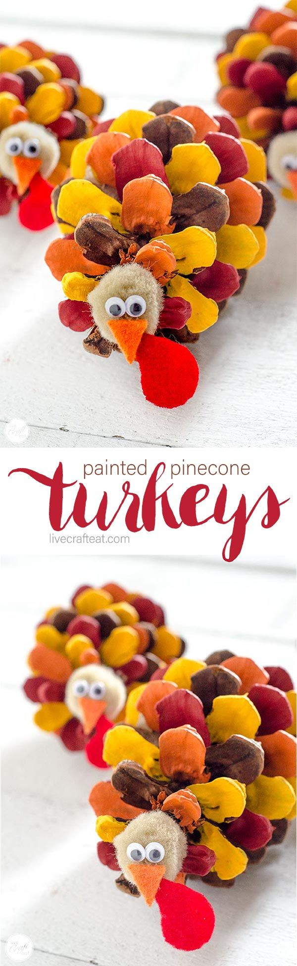 Painted Pinecone Turkeys - Thanksgiving Craft For Kids