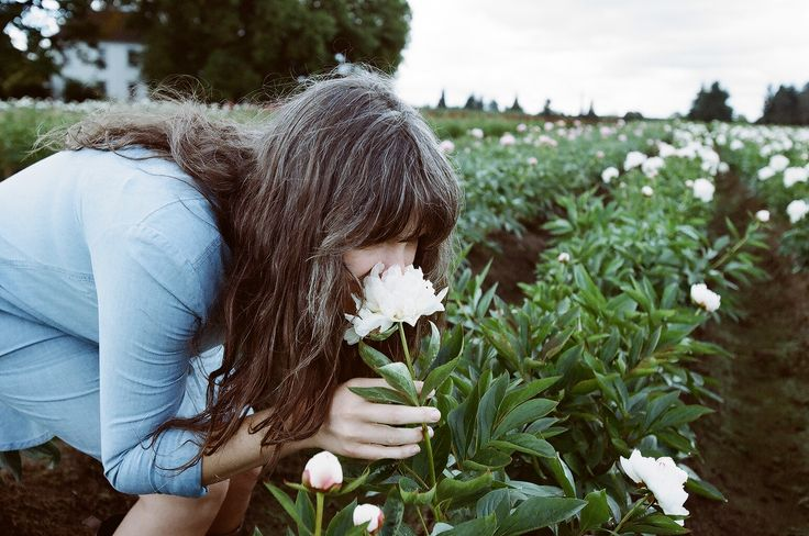Tips for Growing Peonies Kinfolk