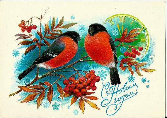 Bullfinch - Birds - Vintage Russian Postcard -Happy New Year by LucyMarket, $6.00