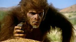 Homo habilis was an ape-like hominid from the Pliocene, and was one of the first humans that wasn't fully herbivorous. Homo habilis is a species of the Hominini tribe, which lived from approximately 2.33 to 1.44 MYA, during the Gelasian Pleistocene period..