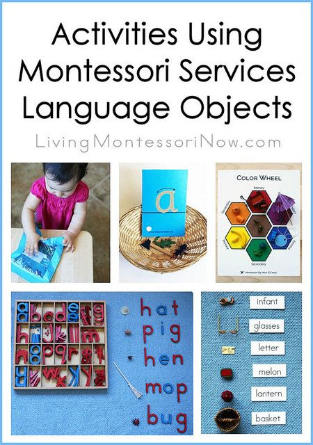 montessori language rationale essay An online montessori resource  one of the most vital teaching tools available to montessori teachers is observation  the importance of dynamic language,.