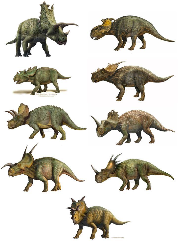 3499 best dinosaurs & creatures extinct or endangerd ... Extinct Species Dinosaurs