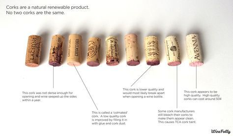 Different types of #wine corks | #WineFolly