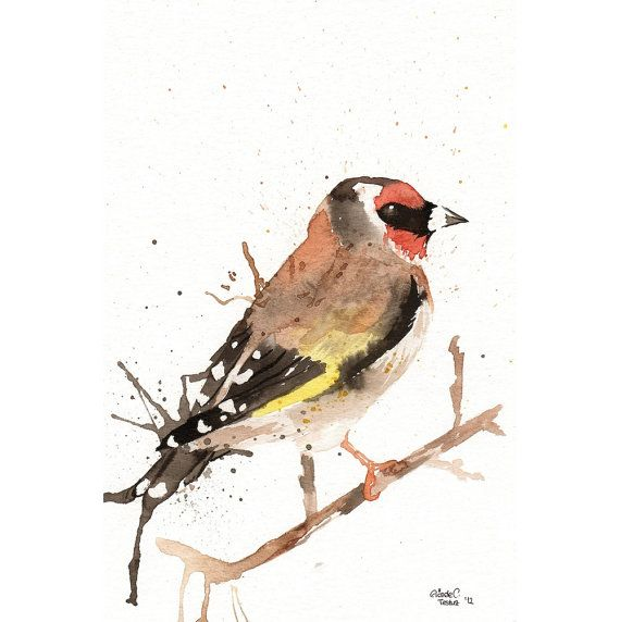 Original watercolor Painting  Goldfinch Bird Yellow by MilkFoam, $45.00