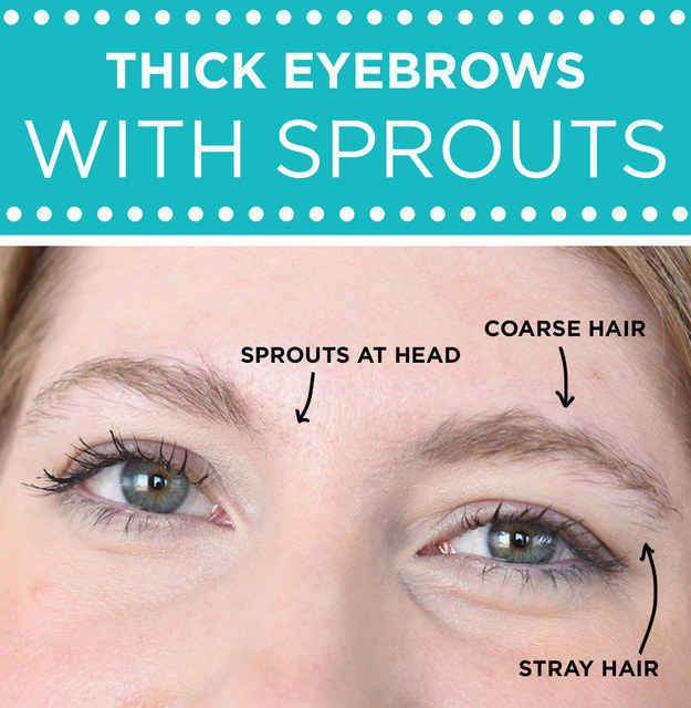 """For thick eyebrows that have """"sprouts"""" at the head: Focus on filling in the head and cleaning up the tail."""