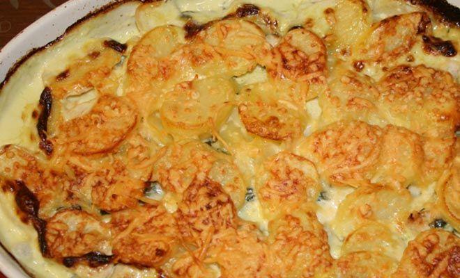 food_recept_spinazieschotel_met_kip_3