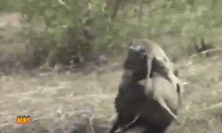 TOYYYY_ESTUDIANDO: # Bierzo.Ponferrada.El sorteo de la Bonoloto deja ...