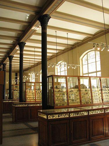 Berlin natural history museum