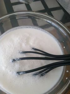 Coconut milk & honey hair mask for growth and the prevention of hair loss