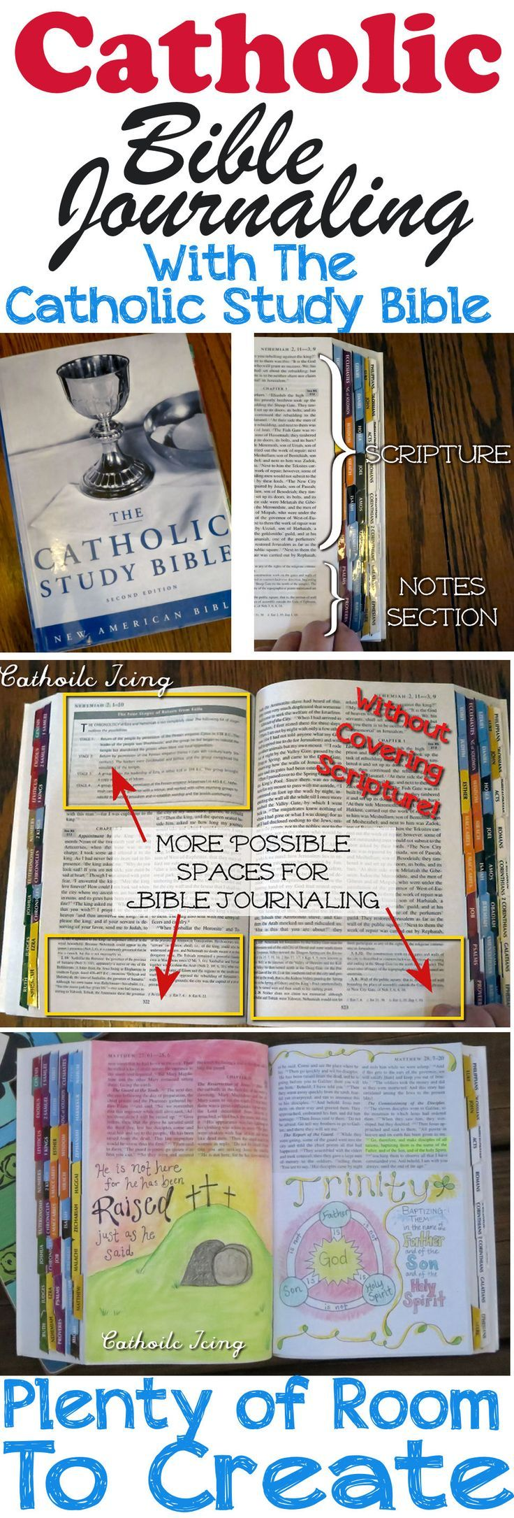 Bible study catholic monthly