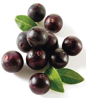 L'Açaï est l'un des fruits les plus riches en antioxydants.