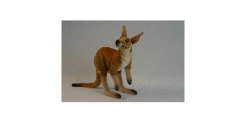 Male Kangaroo plush 4226