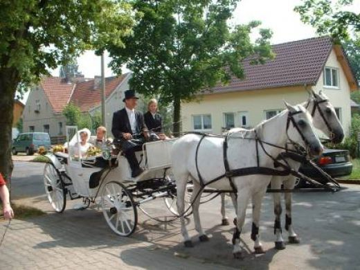 Traditional wedding customs are an important part of weddings around the globe. Each culture has their own unique customs which make weddings meaningful and enjoyable. German weddings are rich with numerous customs which would make a wonderful...