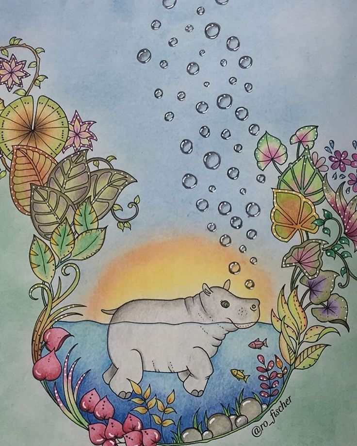 Hippo in Pond from Magical Jungle by Johanna Basford.