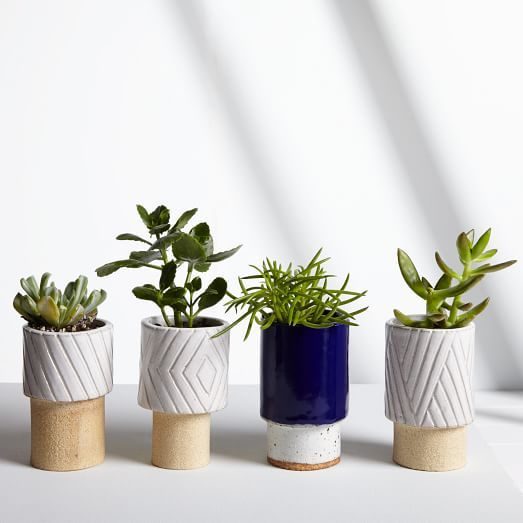 "Inspired by ""nature, our travels through the American landscape, and our love of the handmade,"" Los Angeles-based husband and wife Melissa Tolar and Jonathan Ballak hand-carve the designs on these planters and glaze each one themselves."