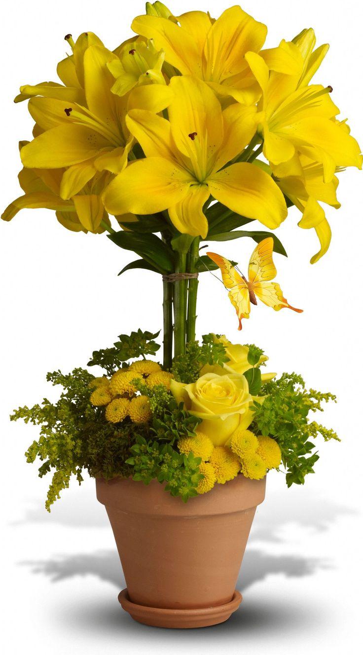 Bouquet de flores amarillas                                                                                                                                                                                 Más