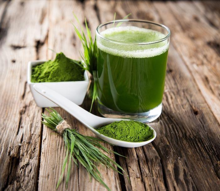 Superfood Weizengras - Das grüne Blut aus der Natur