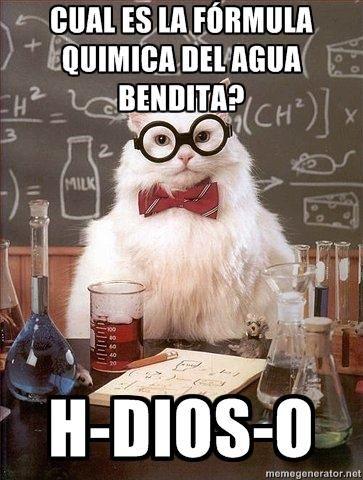 El Gato Químico: Humor Felino - Taringa!