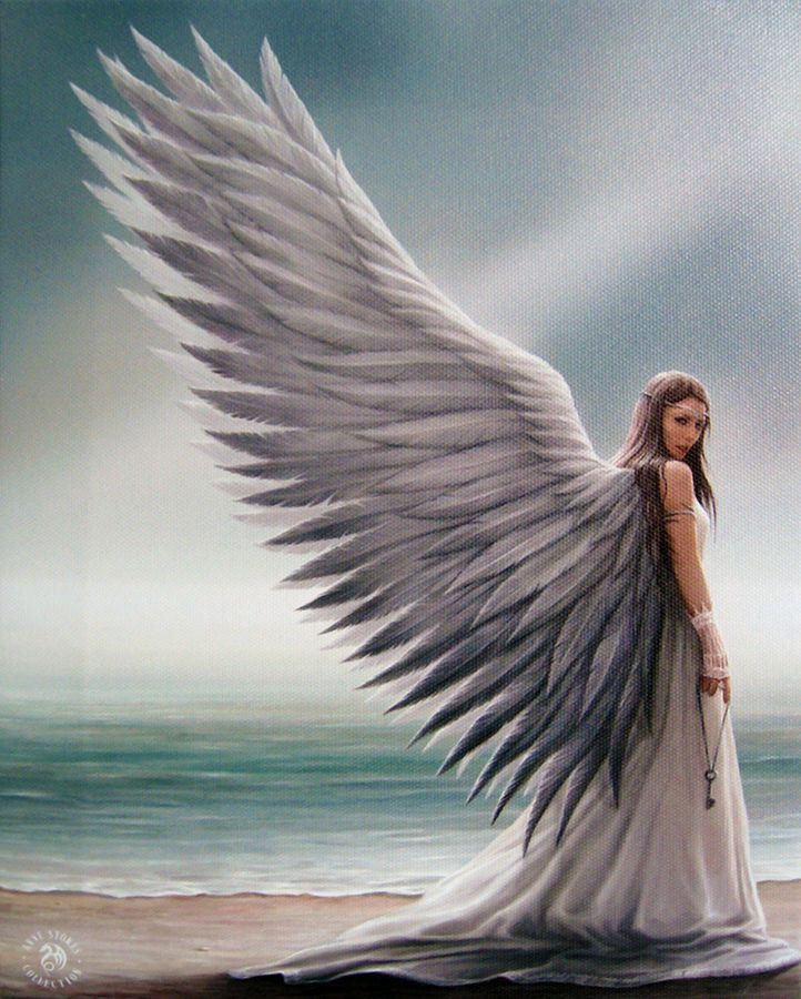 Spirit Guide Wall Plaque Art Print Anne Stokes Angel Guide Angelic Protection