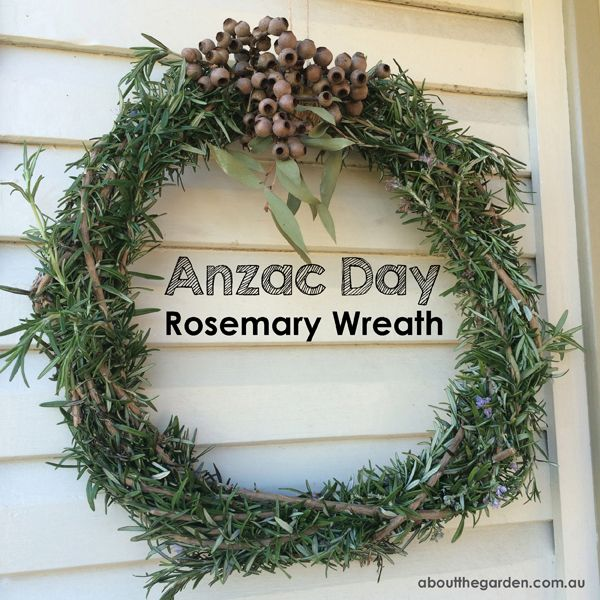 Rosemary wreath for Anzac Day fragrant herb