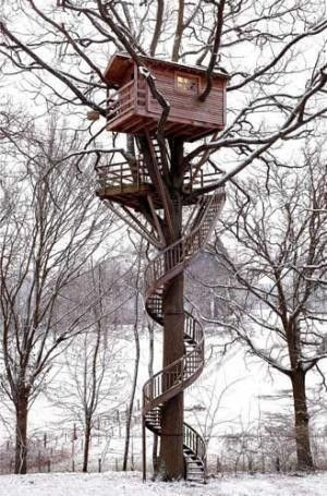 Hee hee, a spiral staircase for the tree house!