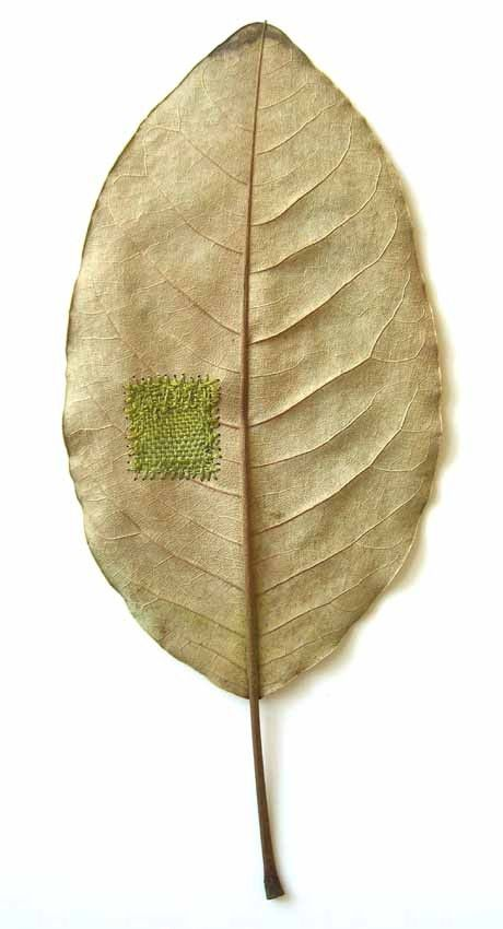 Darned  11x26cm  magnolia leaf, cotton yarn