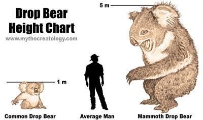 I'm going to need to watch out for the drop bears next week...