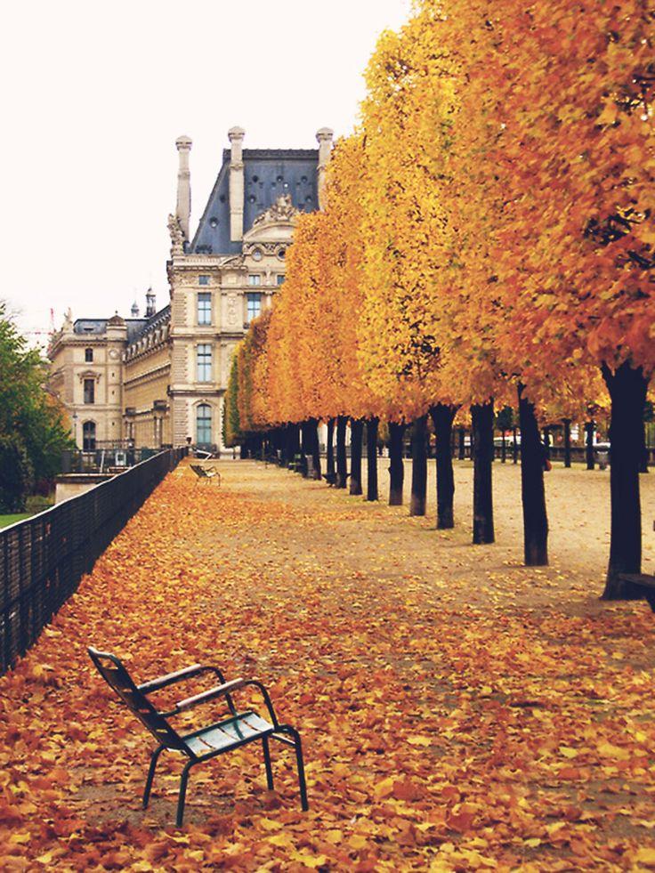 Jardin des Tuileries - Paris ♥ Inspirations, Idées & Suggestions, JesuisauJardin.fr, Atelier de paysage Paris, Stéphane Vimond Créateur de jardins ♥