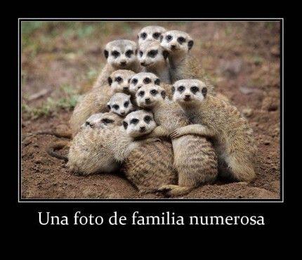 Una foto de familia numerosa * Palabras y citas - http://www.fotosbonitaseincreibles.com/una-foto-de-familia-numerosa-palabras-y-citas/