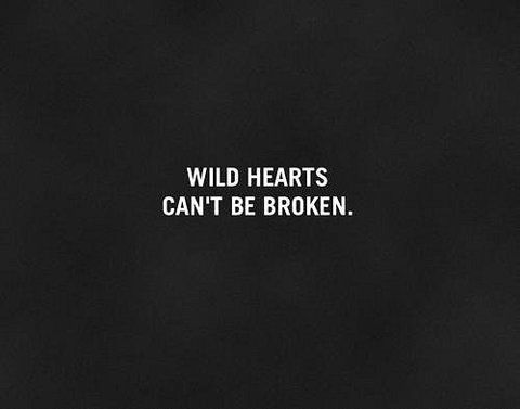 Wild Hearts Can't Be Broken....love that show!