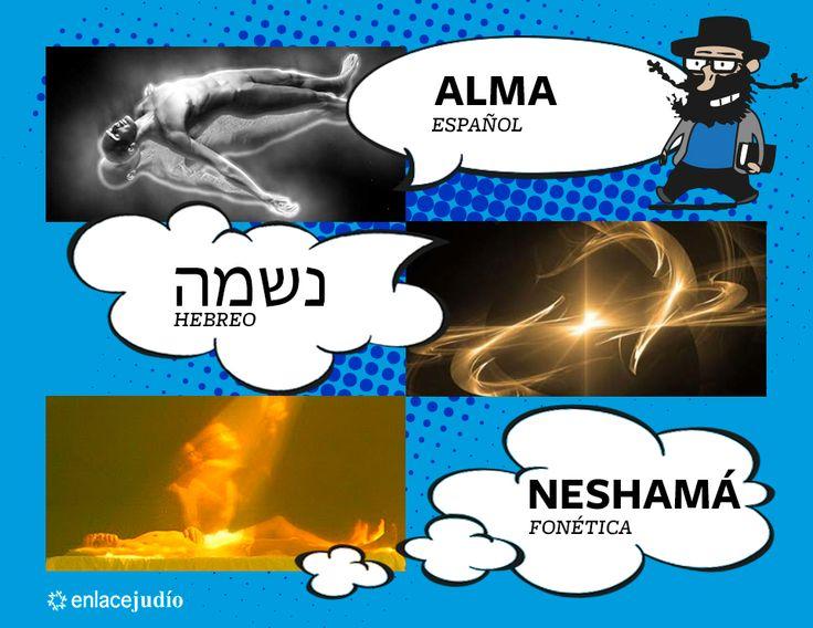 Neshamá / Alma.  https://www.facebook.com/aprendehebreoo