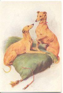 l_whippet-rescue-vintage-postcard-front.jpg 203×300 pixels
