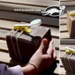 A Quick and Easy CATAPULT for KIDS