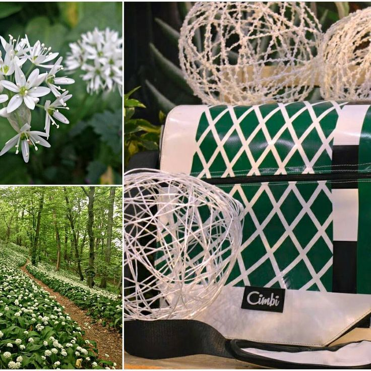 Perfect match with nature. Look how well this Cimbi looks with the blooming ramsons :) #bloom #flowers  #perfectmatch #getyourcimbi #findyourcimbi #tompautca #ecodesign #consiousshopping #spring