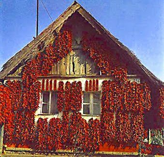 Paprika on the house in Hungary