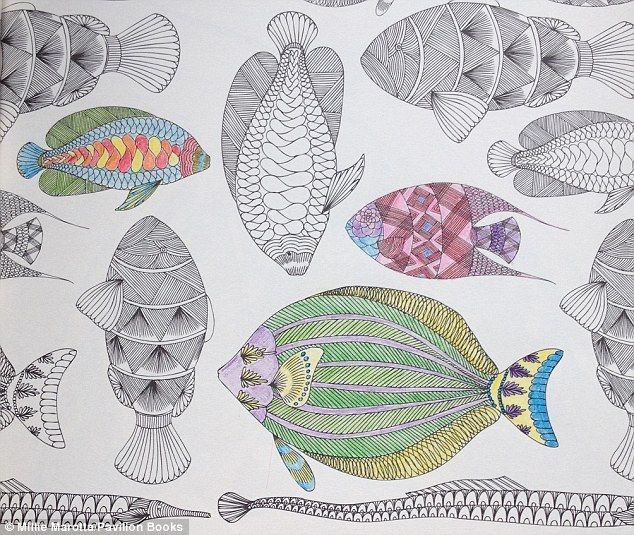 Animal Kingdom Colouring Book Fish Images About Millie Marotta On Coloring
