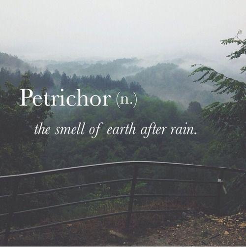 Ah so rain fragrance has a real name