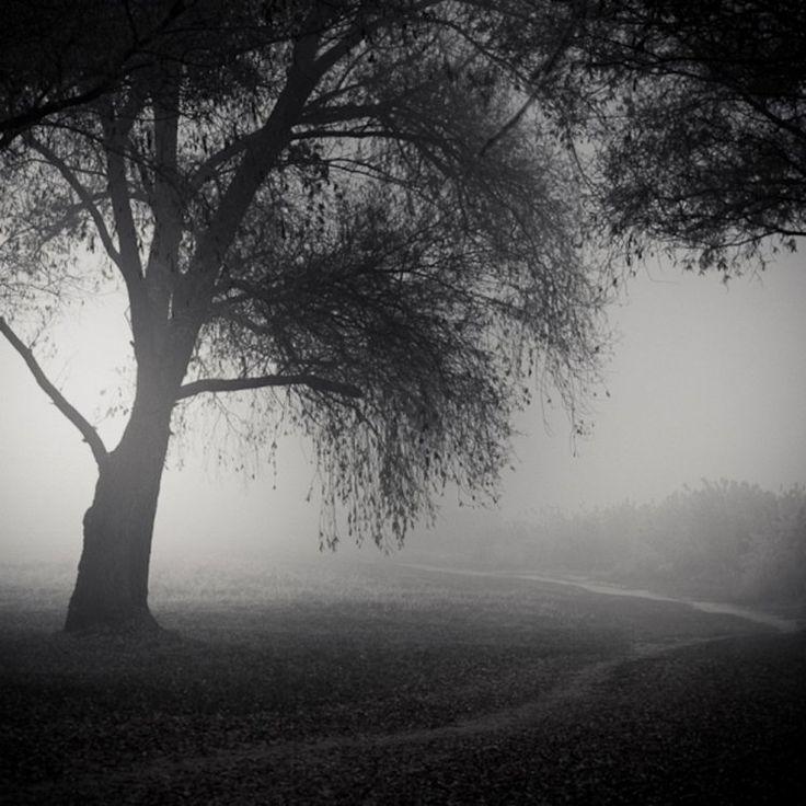 Черно-белые пейзажные фотографии Золтана Бекефи