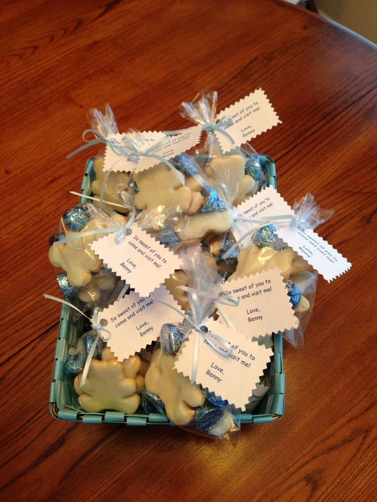 Hospital Visitors Favor Bags From New Baby Bear Sugar