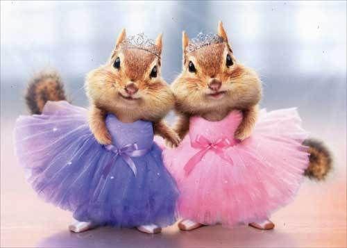 Chipmunk-Ballerina-Duo-Funny-Thank-You-Card-Greeting-Card-by-Avanti-Press