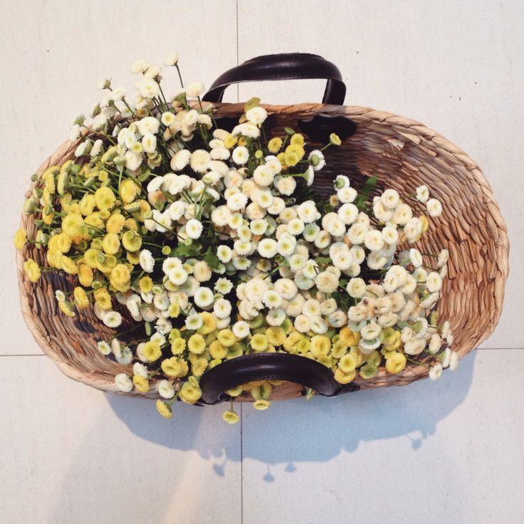 Flower Therapy #forLemonRindCafe