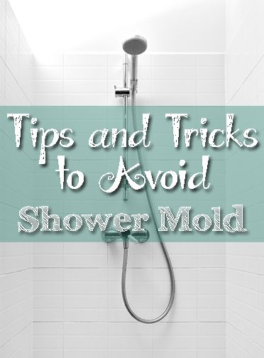 Tips and tricks to avoid shower mold