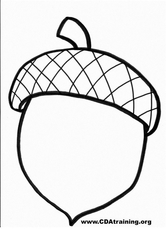 Draw Acorn Acorn Drawing Puredurt Info Puredurt Info Acorn Drawing Acorn Crafts Coloring Pages