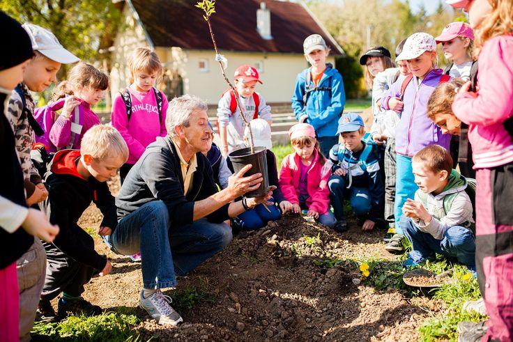 Sdružení TEREZA koordinuje mezinárodně uznávané ekologické vzdělávací programy pro děti a mládež. Foto: archiv E.ON  k článku Ekologického Oskara získalo vzdělávací centrum TEREZA  -bea-