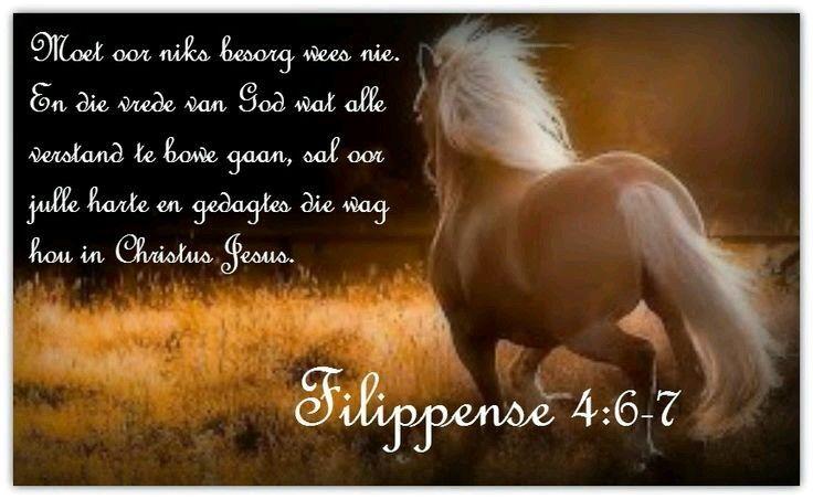 FILIPPENSE 4:6-7Wees oor niks besorg nie, maar laat julle begeertes in alles deur gebed en smeking met danksegging bekend word by God.  En die vrede van God, wat alle verstand te bowe gaan, sal julle harte en julle sinne bewaar in Christus Jesus.