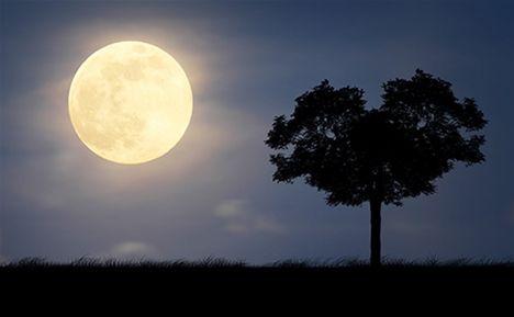 Onsdagen den 23 mars kl 20-20.30 är det dags för Näras fullmånemeditation! Ju fler vi är som mediterar samtidigt, ju starkare energier kan vi sprida. Så tipsa alla du känner. Meditera med oss och sänd kärleksfull energi över världen!