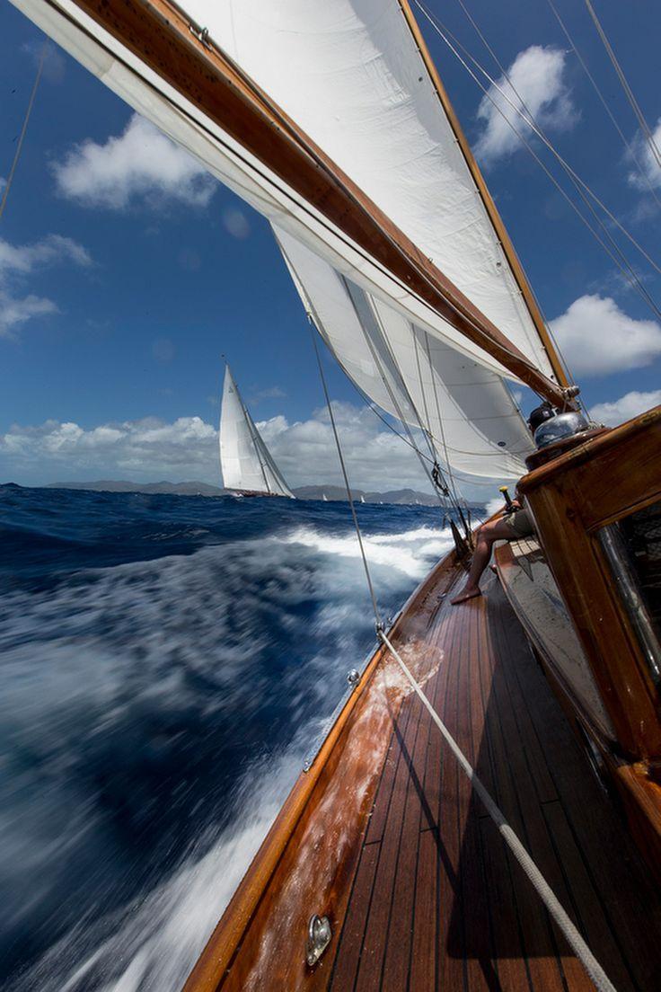 http://www.flamingosail.com/ - Flamingo Sail